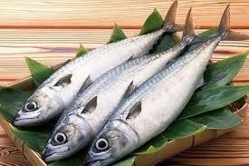 ماهی پرورشی خوراکی