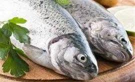 ماهی پرورشی ایرانی